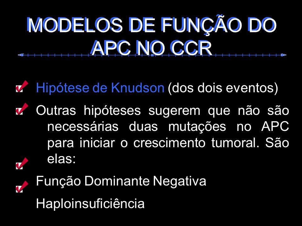 Hipótese de Knudson (dos dois eventos) Outras hipóteses sugerem que não são necessárias duas mutações no APC para iniciar o crescimento tumoral. São e