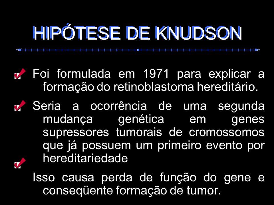 Foi formulada em 1971 para explicar a formação do retinoblastoma hereditário. Seria a ocorrência de uma segunda mudança genética em genes supressores