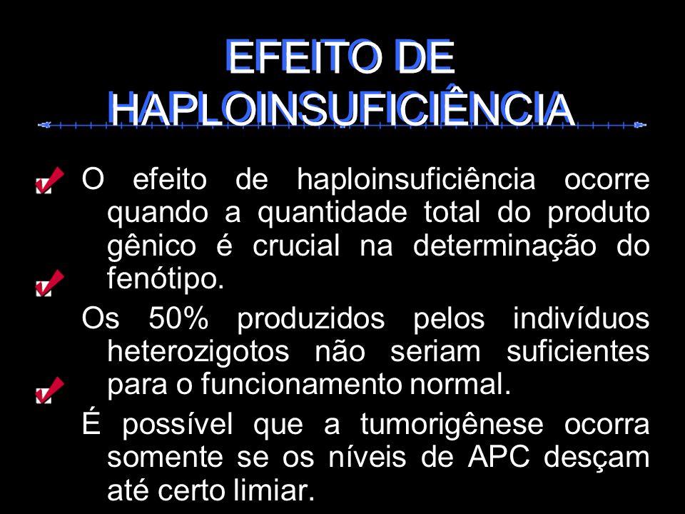 O efeito de haploinsuficiência ocorre quando a quantidade total do produto gênico é crucial na determinação do fenótipo. Os 50% produzidos pelos indiv