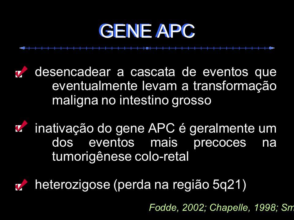 desencadear a cascata de eventos que eventualmente levam a transformação maligna no intestino grosso inativação do gene APC é geralmente um dos evento