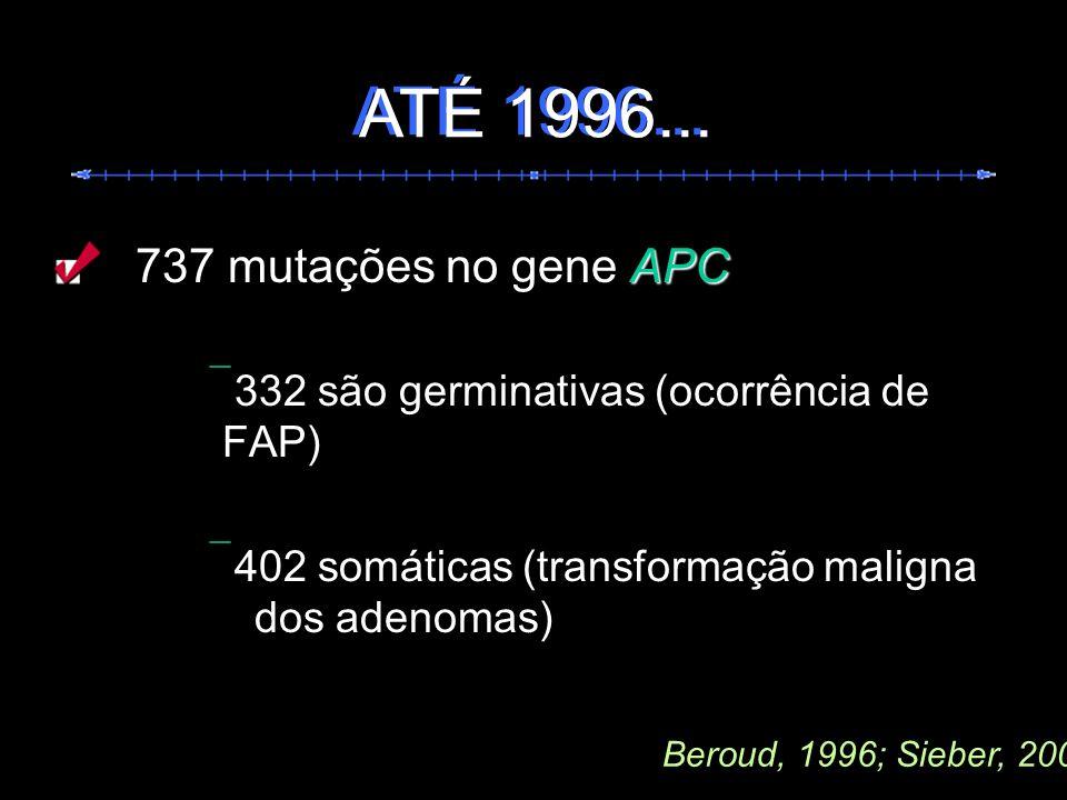 APC 737 mutações no gene APC 332 são germinativas (ocorrência de FAP) 402 somáticas (transformação maligna dos adenomas) Beroud, 1996; Sieber, 2000 AT