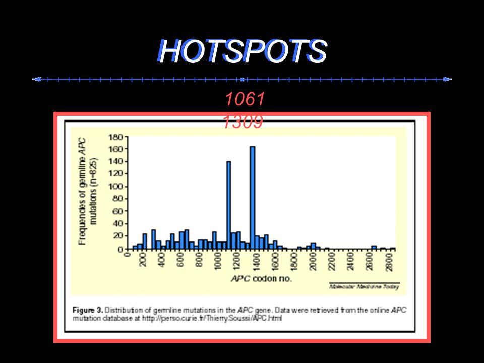 1061 1309 HOTSPOTS