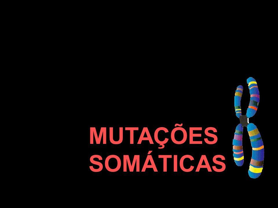 MUTAÇÕES SOMÁTICAS