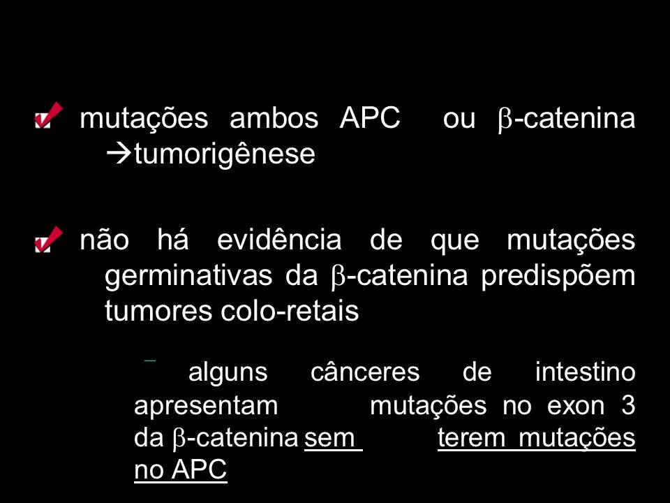 mutações ambos APC ou -catenina tumorigênese não há evidência de que mutações germinativas da -catenina predispõem tumores colo-retais alguns cânceres