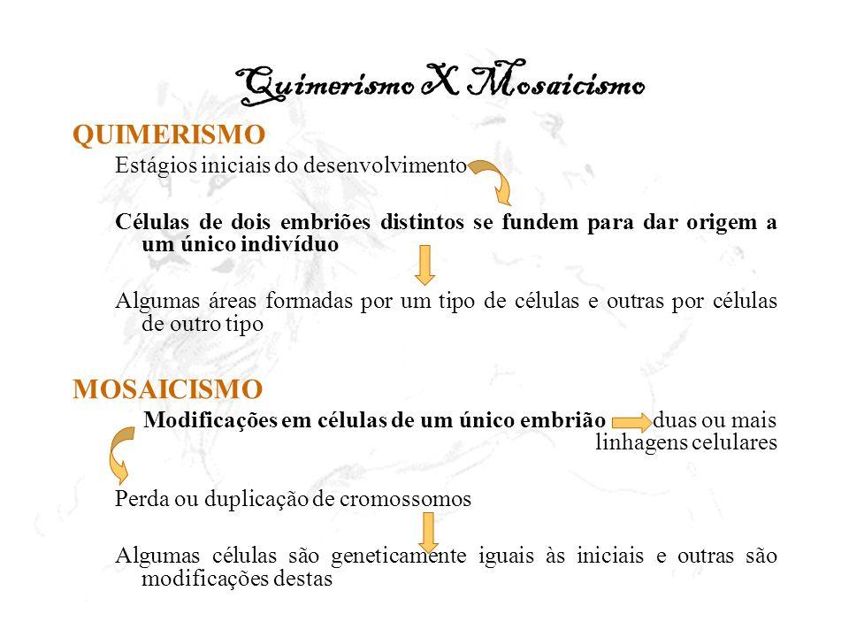 Quimerismo X Mosaicismo QUIMERISMO Estágios iniciais do desenvolvimento Células de dois embriões distintos se fundem para dar origem a um único indiví