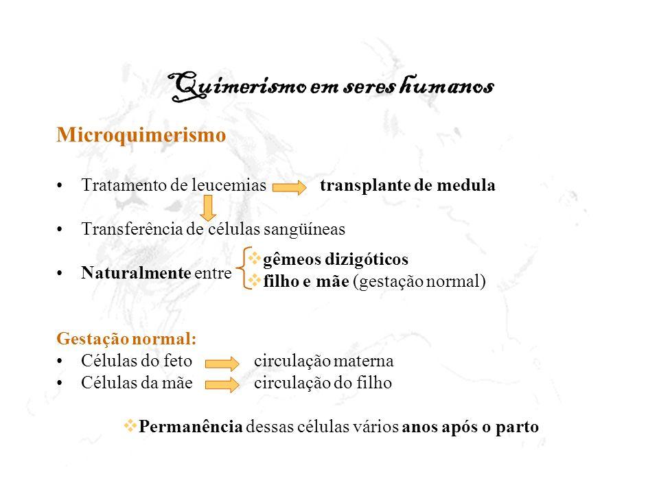 Quimerismo em seres humanos Microquimerismo Tratamento de leucemiastransplante de medula Transferência de células sangüíneas Naturalmente entre Gestaç