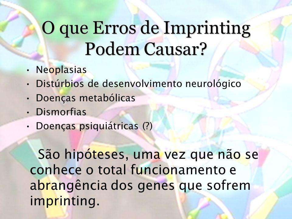 O que Erros de Imprinting Podem Causar.