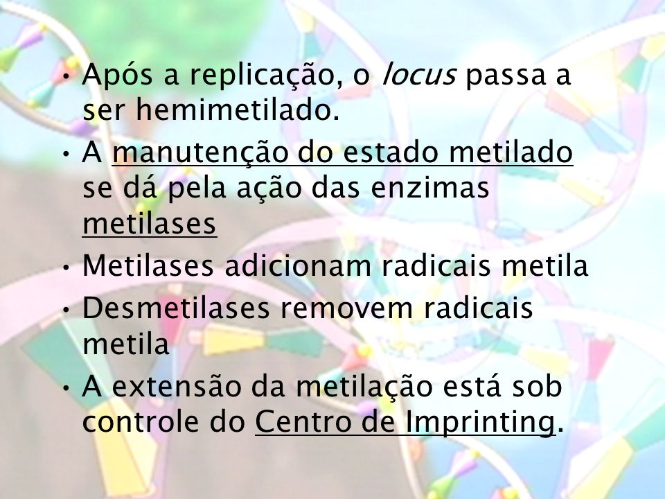 Após a replicação, o locus passa a ser hemimetilado.