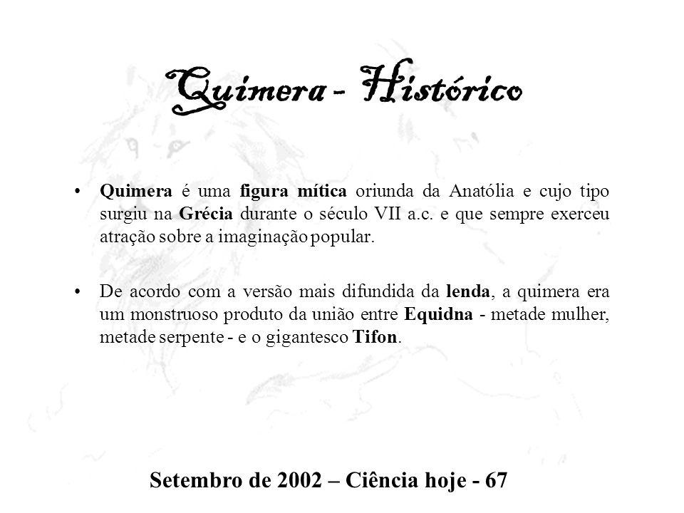 Quimera - Histórico Quimera é uma figura mítica oriunda da Anatólia e cujo tipo surgiu na Grécia durante o século VII a.c. e que sempre exerceu atraçã