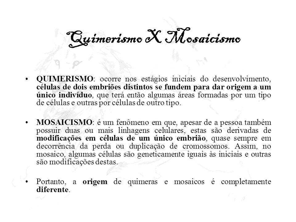 Quimerismo X Mosaicismo QUIMERISMO: ocorre nos estágios iniciais do desenvolvimento, células de dois embriões distintos se fundem para dar origem a um