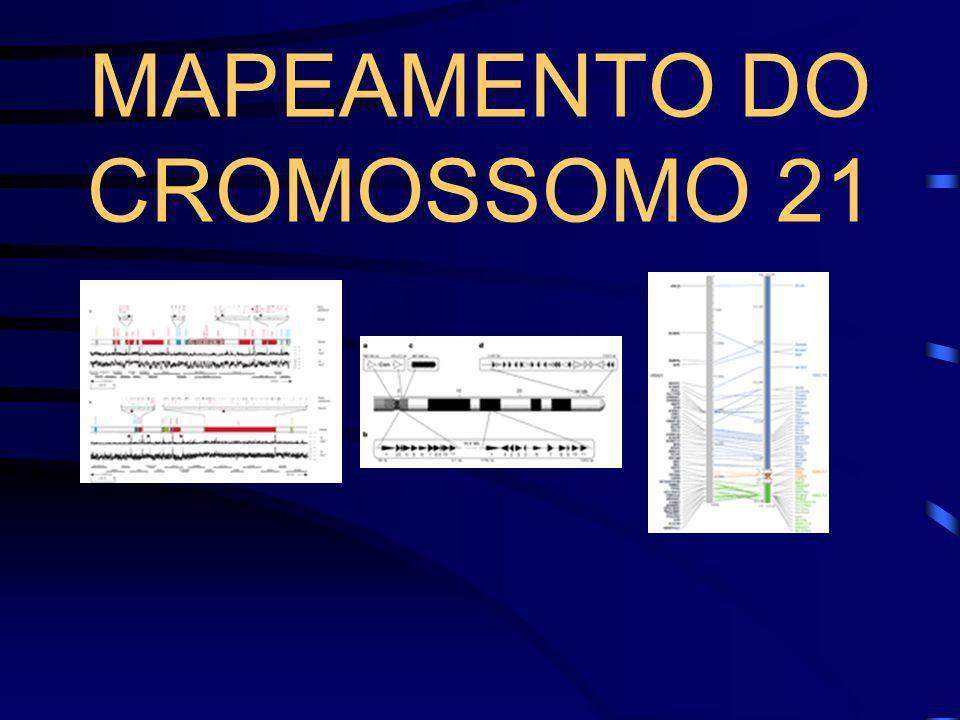 Síndrome de Down -Translocação: depende de qual genitor provém a alteração cromossômica. -Mãe (carreadora balanceada): 10-15% de risco. -Pai (carreado