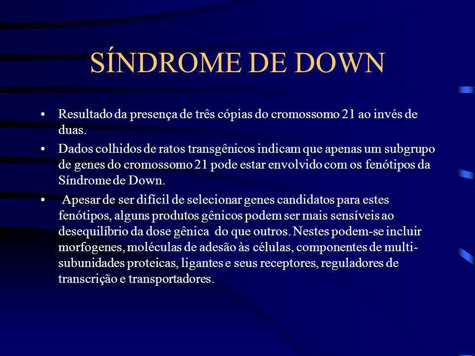 IMPLICAÇÕES MÉDICAS Síndrome de Down Neoplasias Desordens monogênicas: uma forma de Doença de Alzheimer, esclerose lateral amiotrófica, doença poligla