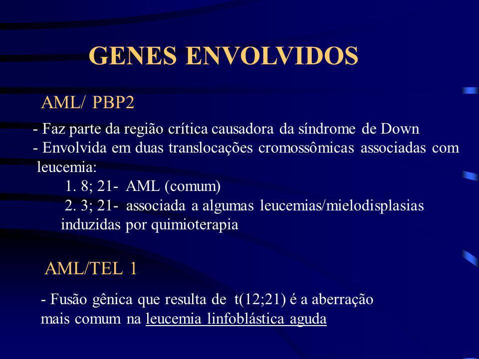 Recém nascido com trissomia do 21 Doença mieloproliferativa Resolução espontânea Comprometimento da proliferação clônica Aparecimento de leucemia mega