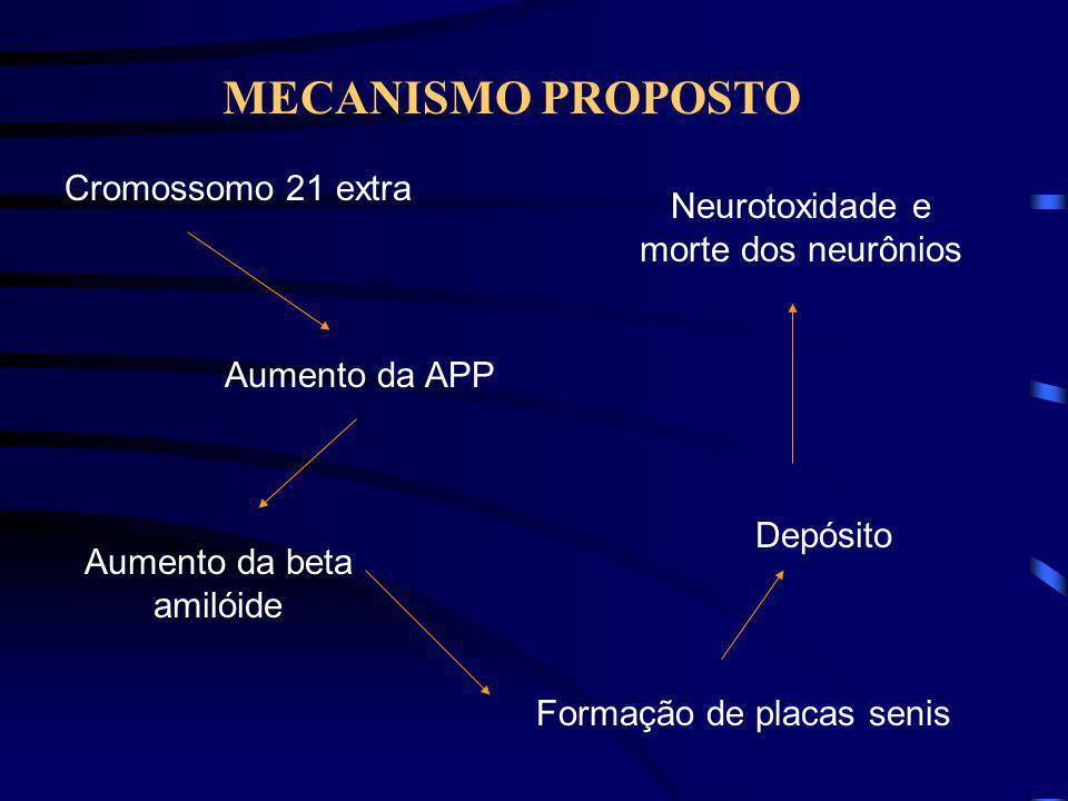 CROMOSSOMOS ENVOLVIDOS NA DOENÇA DE ALZHEIMER Cromossomo 14- gene da presenilina 1 ( PS1) Cromossomo 1- gene da presenilina 2 (PS2) Cromossomo 19 – ge