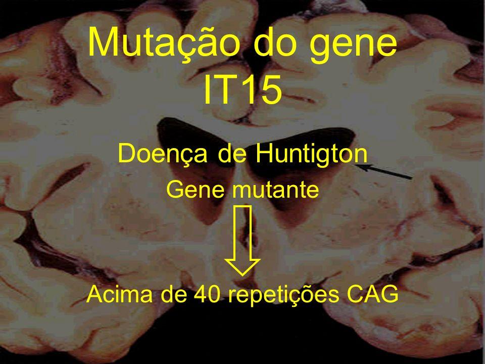 Mutação do gene IT15 Doença de Huntigton Gene mutante Acima de 40 repetições CAG