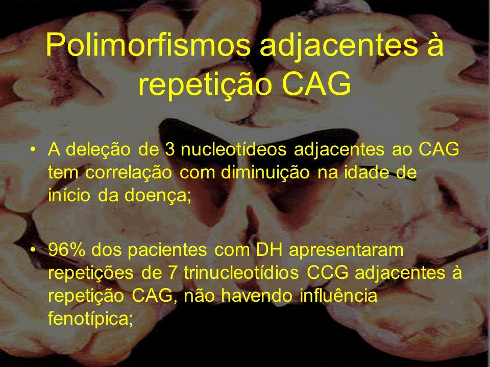 Polimorfismos adjacentes à repetição CAG A deleção de 3 nucleotídeos adjacentes ao CAG tem correlação com diminuição na idade de início da doença; 96%