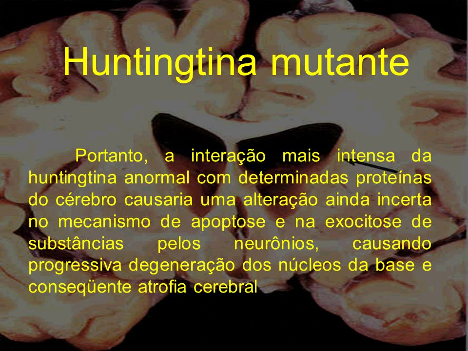 Portanto, a interação mais intensa da huntingtina anormal com determinadas proteínas do cérebro causaria uma alteração ainda incerta no mecanismo de a