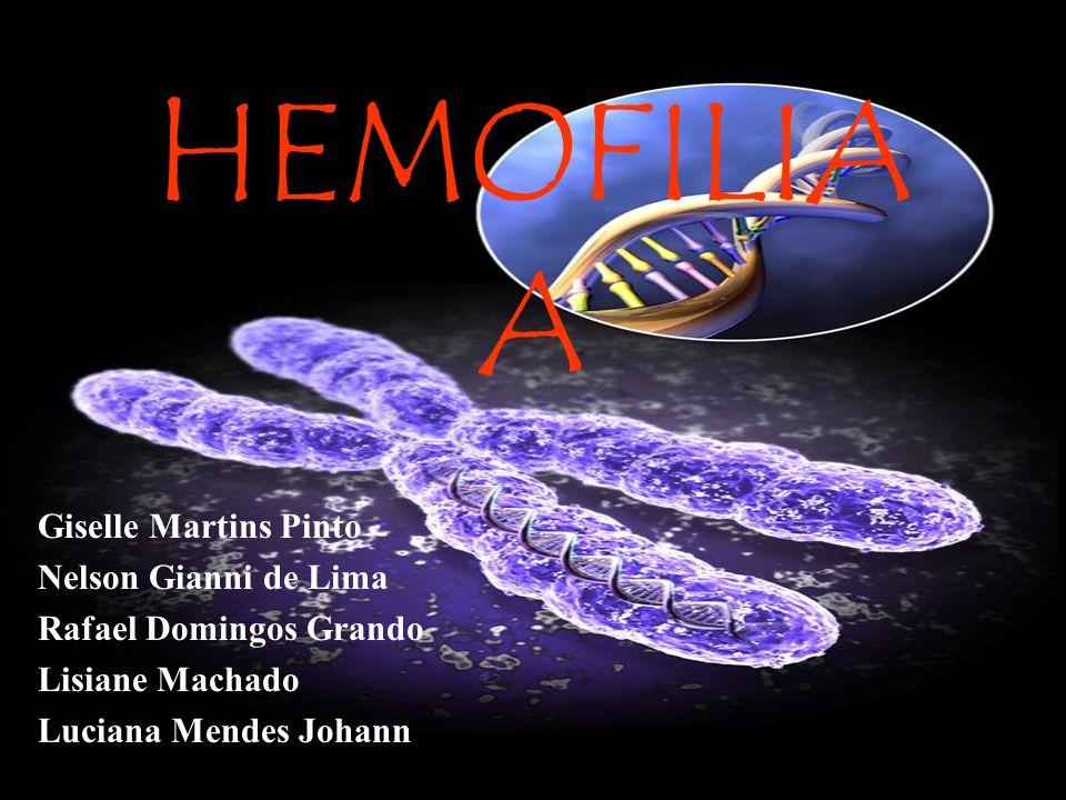 HEMOFILIA A Giselle Martins Pinto Nelson Gianni de Lima Rafael Domingos Grando Lisiane Machado Luciana Mendes Johann