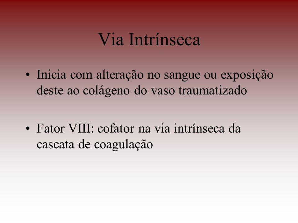Via Intrínseca Inicia com alteração no sangue ou exposição deste ao colágeno do vaso traumatizado Fator VIII: cofator na via intrínseca da cascata de
