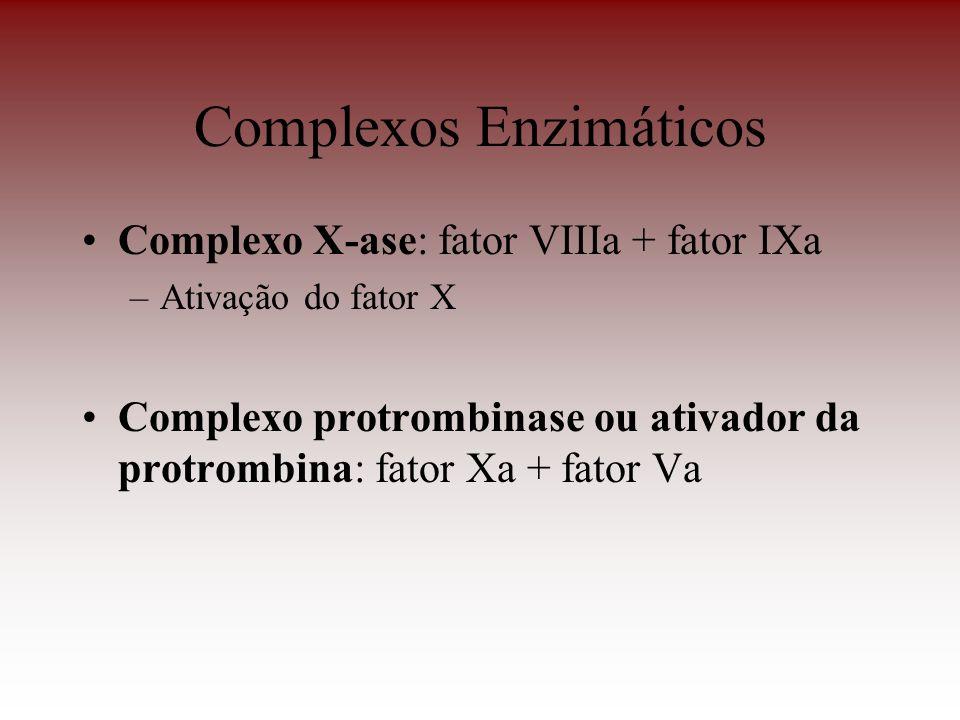Complexos Enzimáticos Complexo X-ase: fator VIIIa + fator IXa –Ativação do fator X Complexo protrombinase ou ativador da protrombina: fator Xa + fator