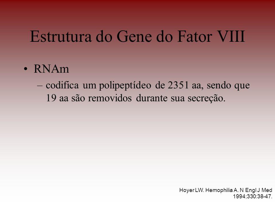 Estrutura do Gene do Fator VIII RNAm –codifica um polipeptídeo de 2351 aa, sendo que 19 aa são removidos durante sua secreção. Hoyer LW. Hemophilia A.