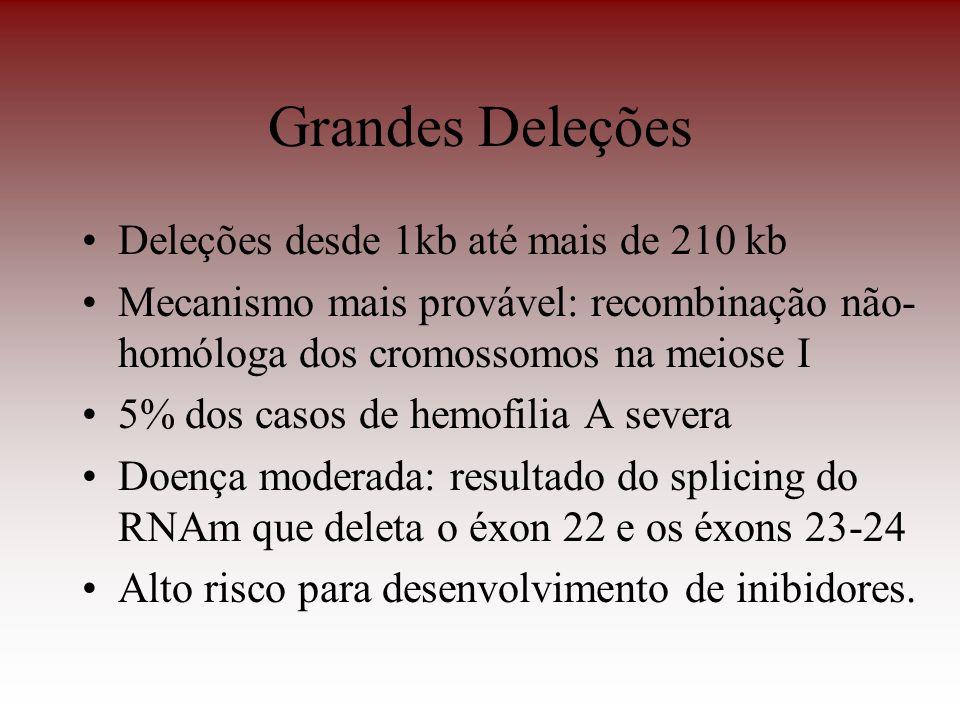 Grandes Deleções Deleções desde 1kb até mais de 210 kb Mecanismo mais provável: recombinação não- homóloga dos cromossomos na meiose I 5% dos casos de