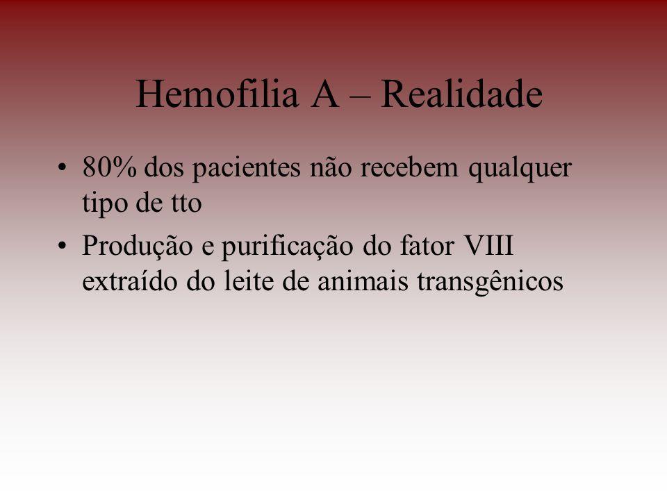 Hemofilia A – Realidade 80% dos pacientes não recebem qualquer tipo de tto Produção e purificação do fator VIII extraído do leite de animais transgêni