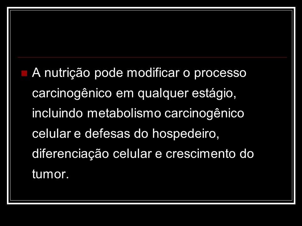 É importante lembrar também que nenhum alimento isolado é capaz de prevenir ou induzir ao câncer