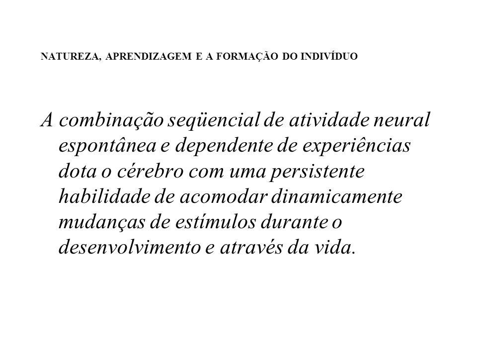 NATUREZA, APRENDIZAGEM E A FORMAÇÃO DO INDIVÍDUO A combinação seqüencial de atividade neural espontânea e dependente de experiências dota o cérebro co
