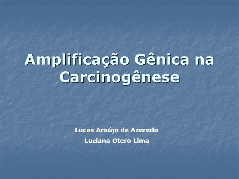 Amplificação Gênica na Carcinogênese Lucas Araújo de Azeredo Luciana Otero Lima