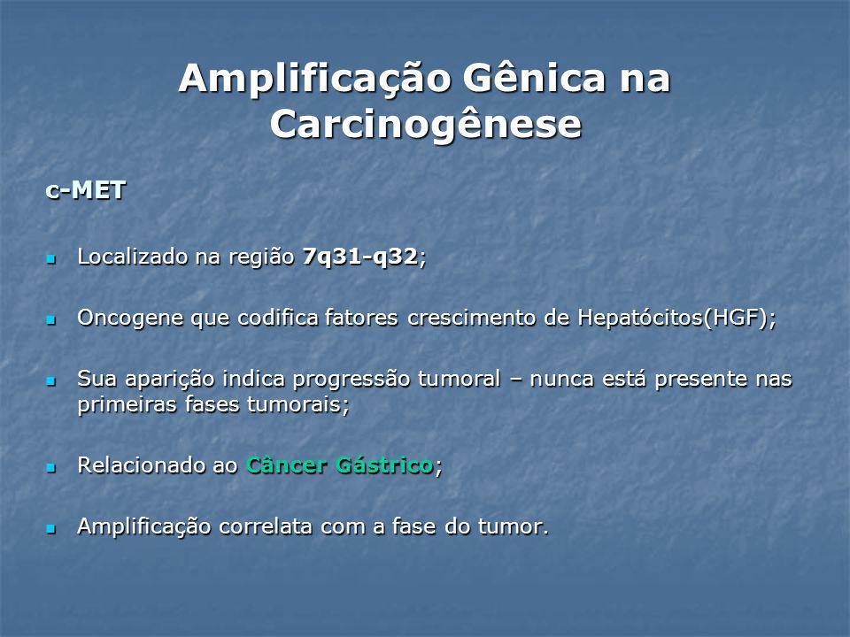 c-MET Localizado na região 7q31-q32; Localizado na região 7q31-q32; Oncogene que codifica fatores crescimento de Hepatócitos(HGF); Oncogene que codifi