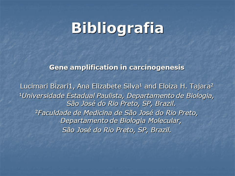 Bibliografia Gene amplification in carcinogenesis Lucimari Bizari1, Ana Elizabete Silva 1 and Eloiza H. Tajara 2 1 Universidade Estadual Paulista, Dep