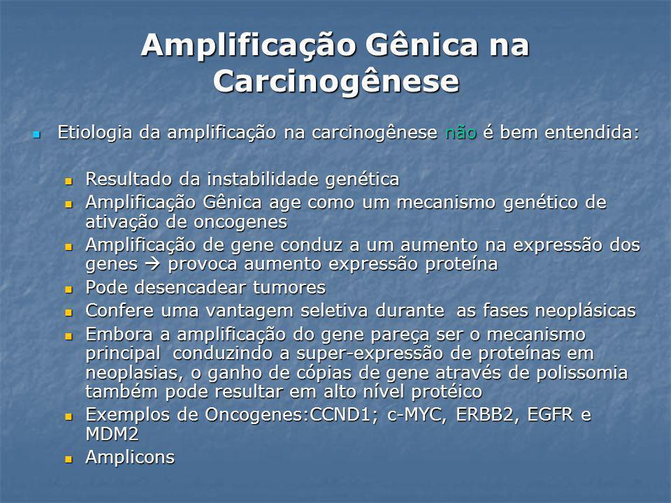 Amplificação Gênica na Carcinogênese Etiologia da amplificação na carcinogênese não é bem entendida: Etiologia da amplificação na carcinogênese não é