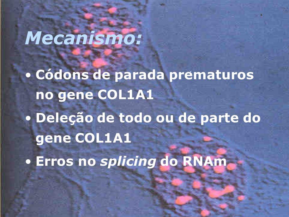 Mecanismo: Códons de parada prematuros no gene COL1A1 Deleção de todo ou de parte do gene COL1A1 Erros no splicing do RNAm