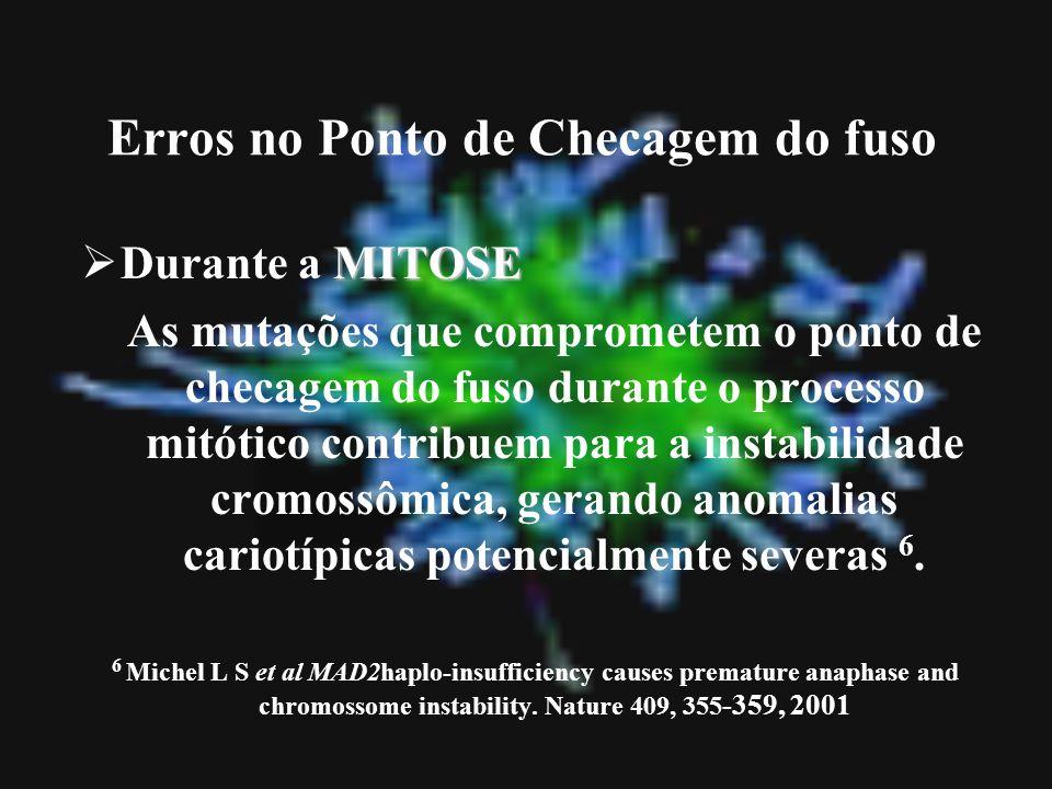 Erros no Ponto de Checagem do fuso MITOSE Durante a MITOSE As mutações que comprometem o ponto de checagem do fuso durante o processo mitótico contrib