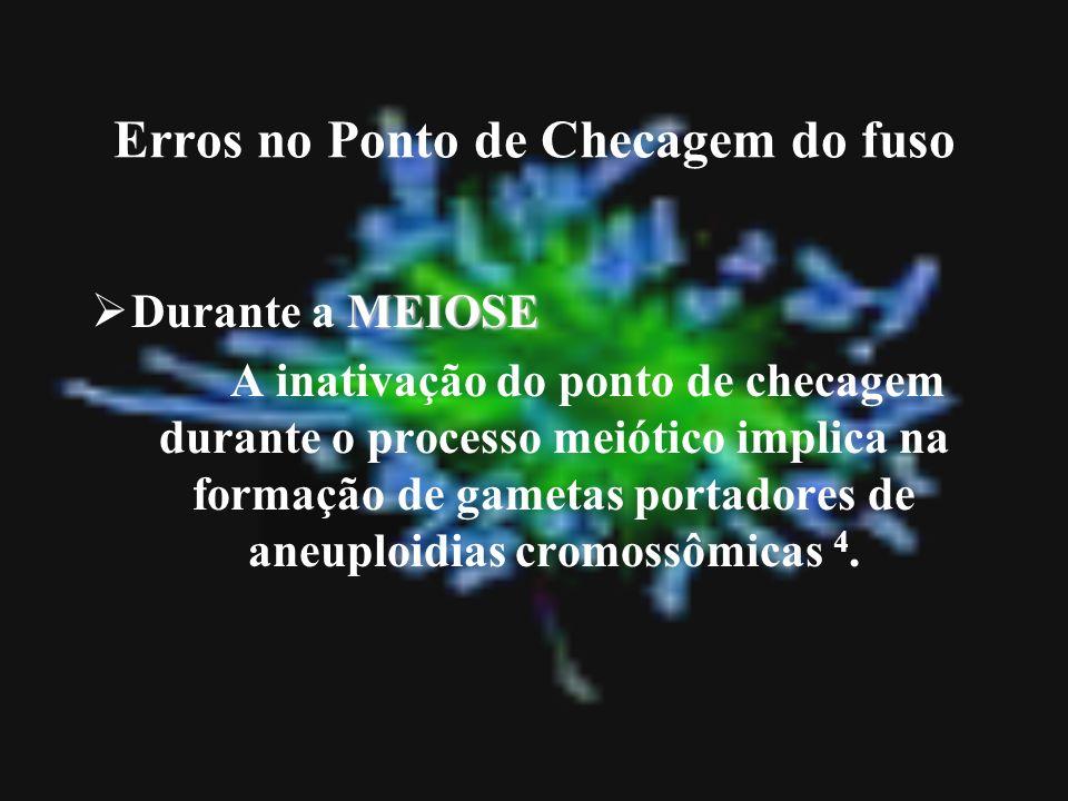 Erros no Ponto de Checagem do fuso MEIOSE Durante a MEIOSE A inativação do ponto de checagem durante o processo meiótico implica na formação de gameta