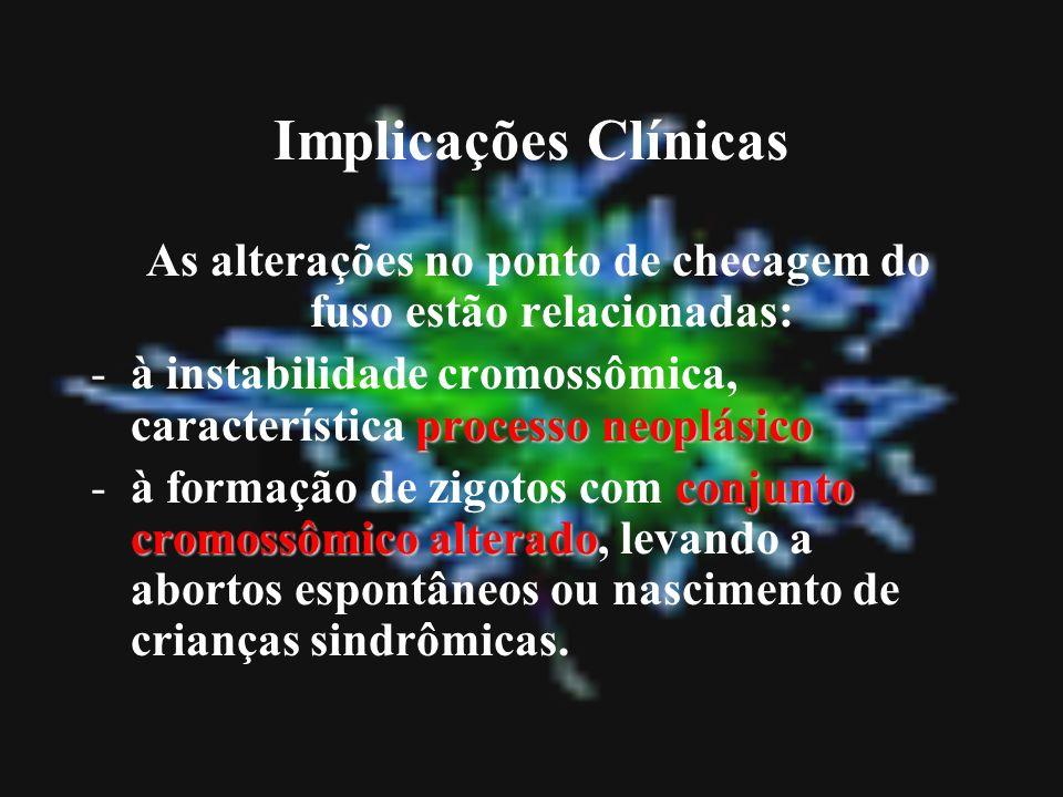 Implicações Clínicas As alterações no ponto de checagem do fuso estão relacionadas: processo neoplásico -à instabilidade cromossômica, característica