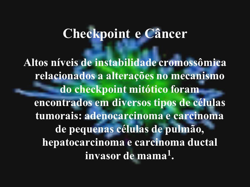 Checkpoint e Câncer Altos níveis de instabilidade cromossômica relacionados a alterações no mecanismo do checkpoint mitótico foram encontrados em dive