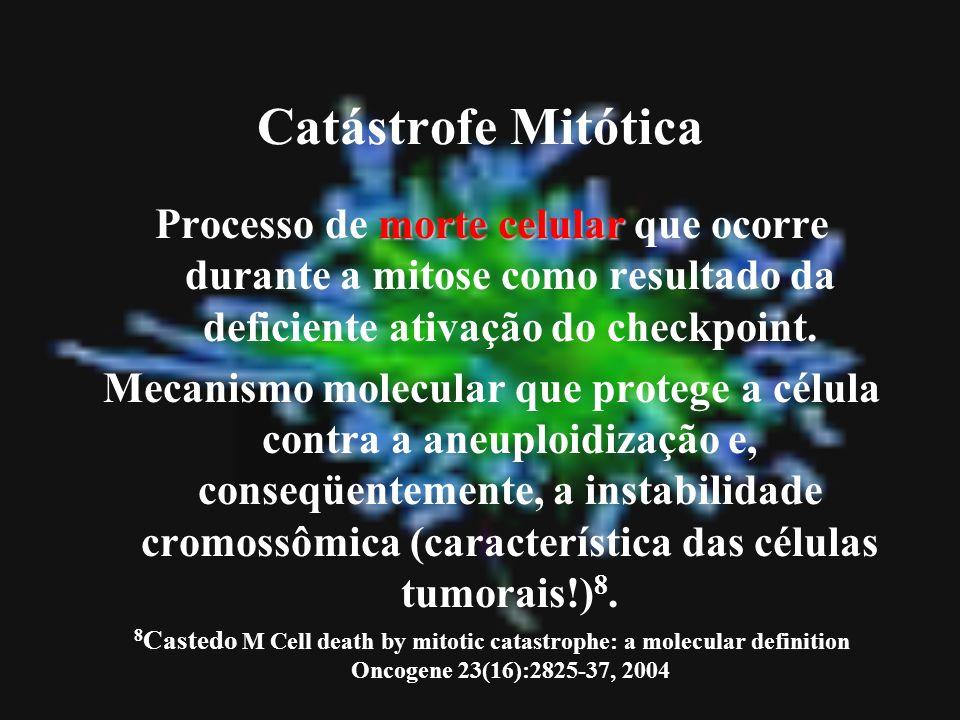 Catástrofe Mitótica morte celular Processo de morte celular que ocorre durante a mitose como resultado da deficiente ativação do checkpoint. Mecanismo
