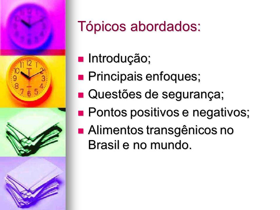 Tópicos abordados: Introdução; Introdução; Principais enfoques; Principais enfoques; Questões de segurança; Questões de segurança; Pontos positivos e