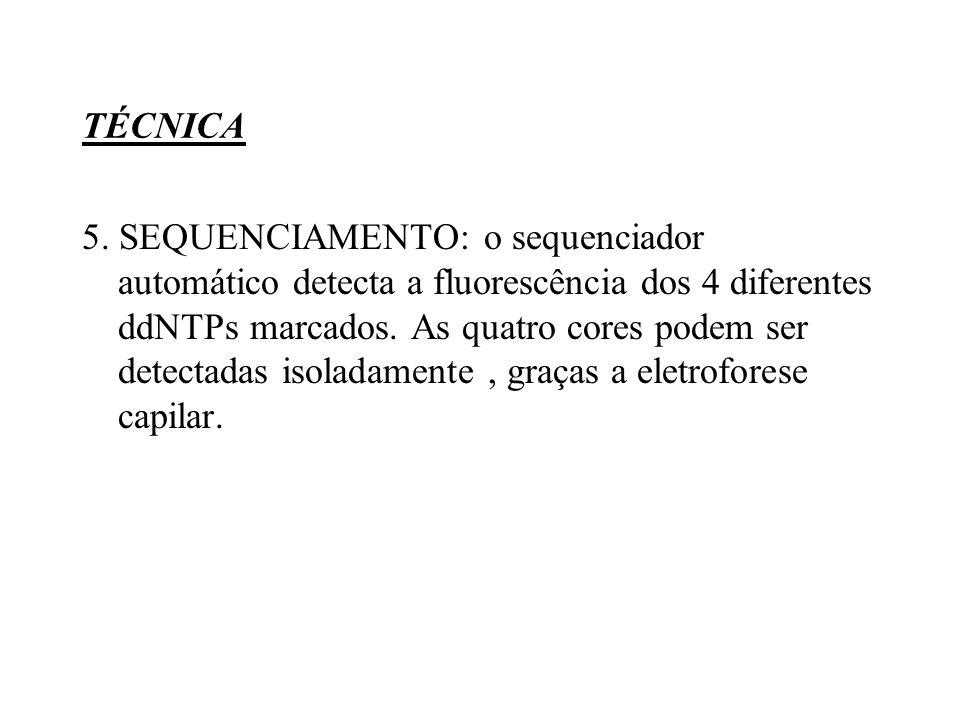 TÉCNICA 5.