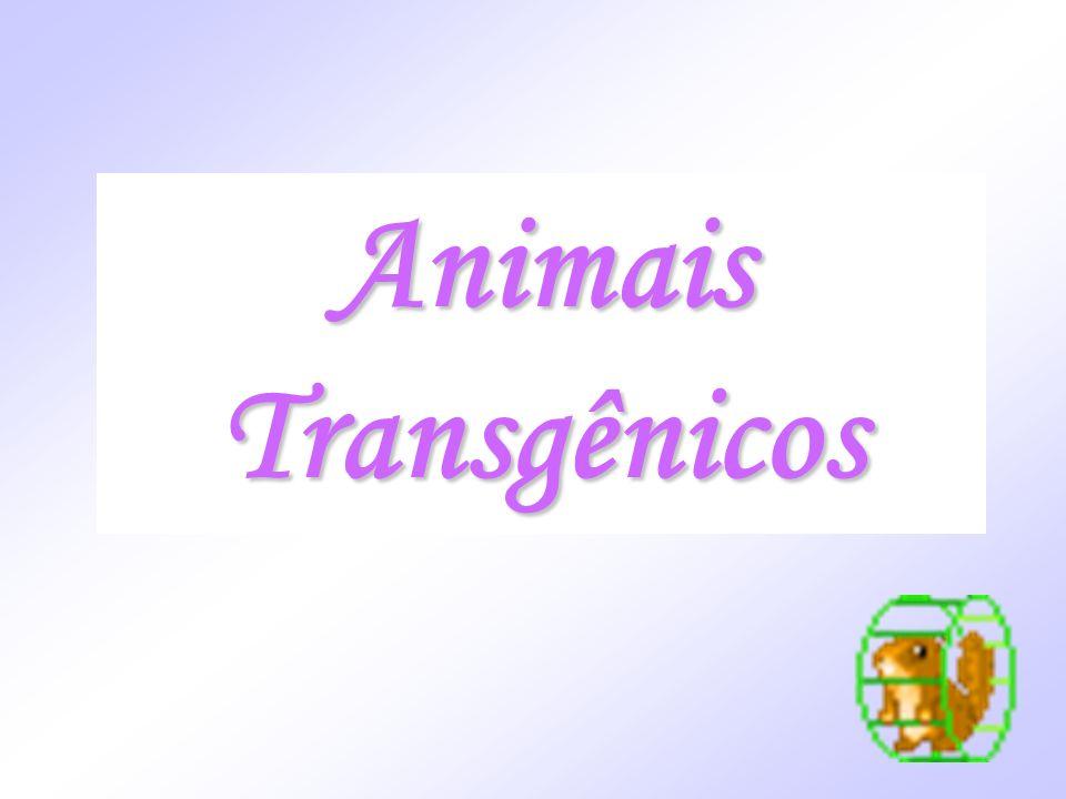 Animais Transgênicos