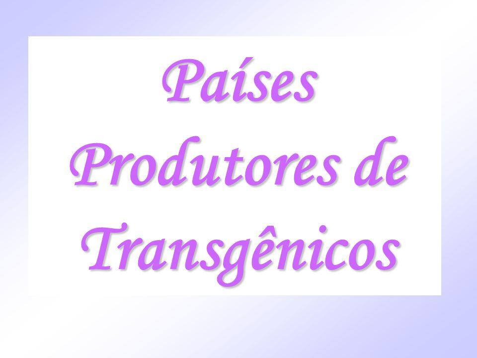 Países Produtores de Transgênicos