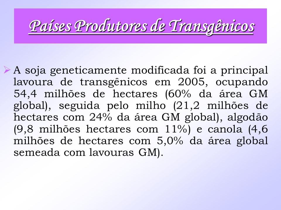 A soja geneticamente modificada foi a principal lavoura de transgênicos em 2005, ocupando 54,4 milhões de hectares (60% da área GM global), seguida pe