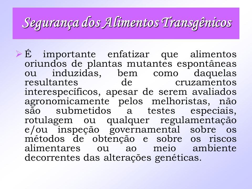 Segurança dos Alimentos Transgênicos É importante enfatizar que alimentos oriundos de plantas mutantes espontâneas ou induzidas, bem como daquelas res