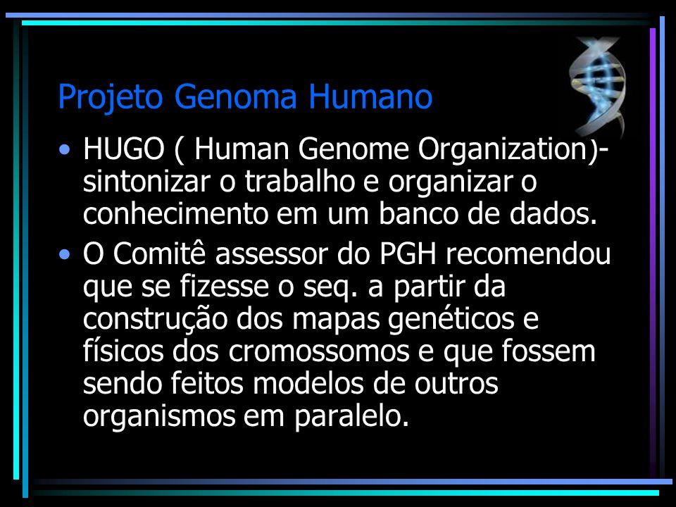 Projeto Genoma Humano HUGO ( Human Genome Organization)- sintonizar o trabalho e organizar o conhecimento em um banco de dados. O Comitê assessor do P
