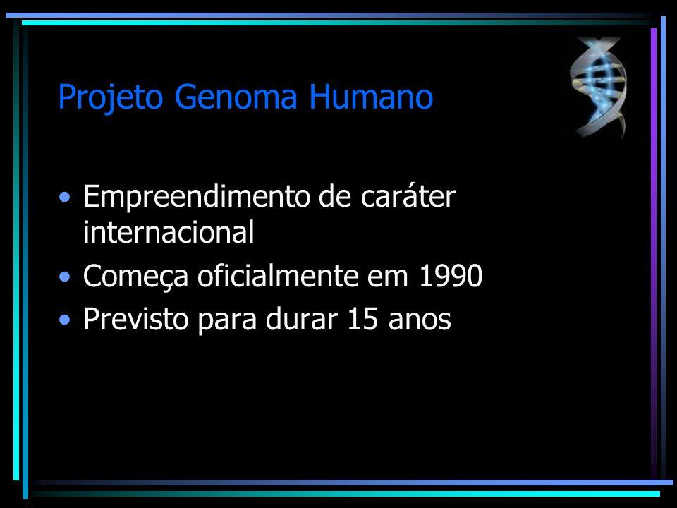 Projeto Genoma Humano Objetivos: Identificar todos os genes que compõe o DNA humano Determinar a seqüência dos 3 bilhões de pares de bases que compõe o DNA Armazenar estas informações em bancos de dados Melhorar as ferramentas para análise de dados genéticos Estudar os aspectos éticos, legais e sociais de acesso às informações genéticas