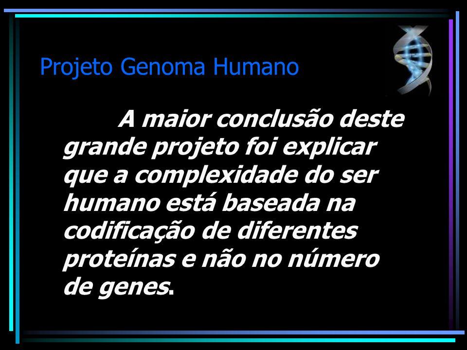 Projeto Genoma Humano A maior conclusão deste grande projeto foi explicar que a complexidade do ser humano está baseada na codificação de diferentes p