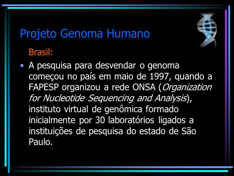 Projeto Genoma Humano Brasil: A pesquisa para desvendar o genoma começou no país em maio de 1997, quando a FAPESP organizou a rede ONSA (Organization