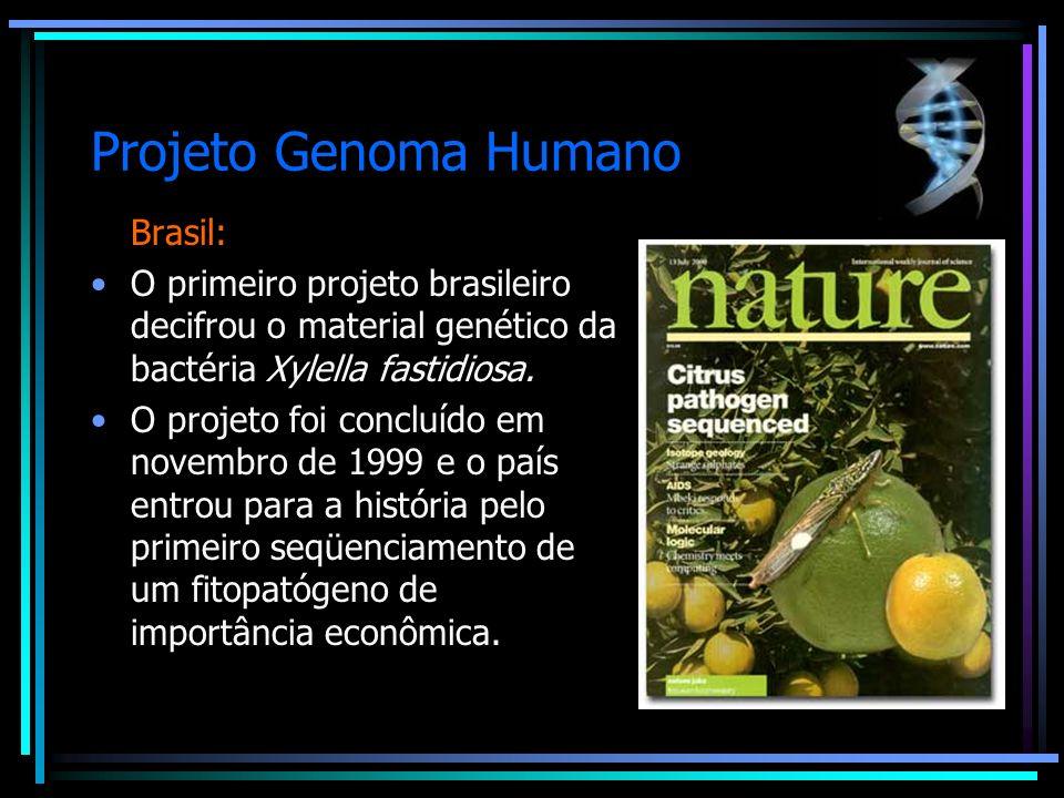 Projeto Genoma Humano Brasil: O primeiro projeto brasileiro decifrou o material genético da bactéria Xylella fastidiosa. O projeto foi concluído em no